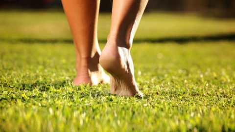 Recomendaciones básicas para el cuidado y mantenimiento de nuestros pies